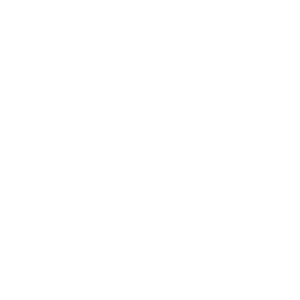 Bicerin Coffee Lab